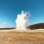 Old Faithful Yellowstone Park